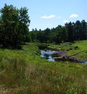 Midstate Trail VI - Barre Falls to Wachusett Meadow (July 31)