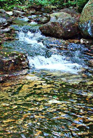 Speckled Mtn. Loop (September 24)