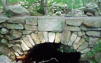 Weetamoo Woods/Pardon Gray Preserve (August 21)