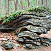Stone Row I