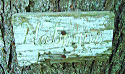 Old sign on the Hutmans Trail