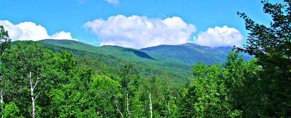 Mt. Washington, from near the west end of the Hutmens Trail.