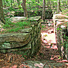 Foundations of the 18th Century Vaughn farmhouse, near Biscuit Hill Road on the Blue Trail