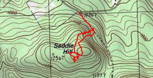Saddle Hill (June 10)