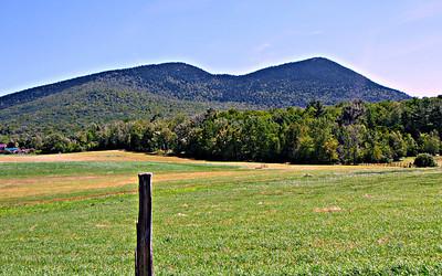 Bald Land Trail (August 10)