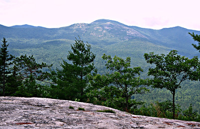 Little Deer Hill; Horseshoe Pond and Lord Hill (July 6)