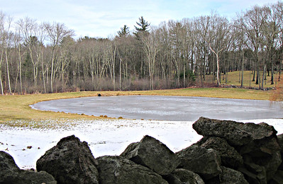 Vineyard Hill and Bradley Palmer State Park (January 21)