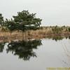 Plateaux_RWAS3085