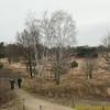 Plateaux_RWAS3069