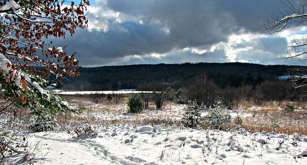 AT from Moose Mtn.Trail to Dartmouth (November 28)