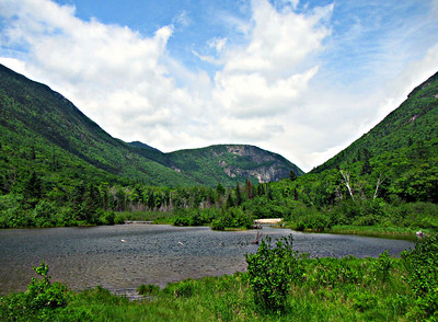 Cave Mtn. - Willey Pond - Saco Lake (June 14)