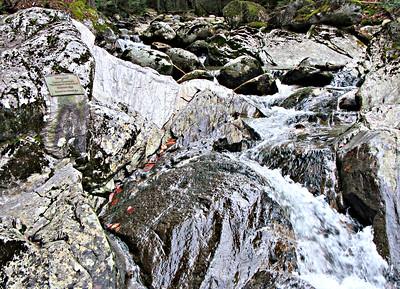Coppermine Trail - Bette's Tribute and Bridal Veil Falls (November 9)