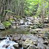 Ammonoosuc River, from bridge near start of Jewell Trail.