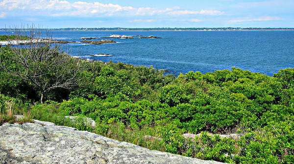 Sachuest Point Redux; Some Cliff Walk Surf (July 11 and 15)