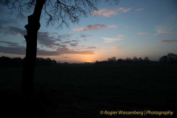 2015-01-31 Vressels bos