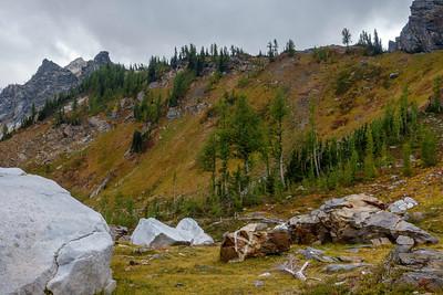 Icicle Ridge