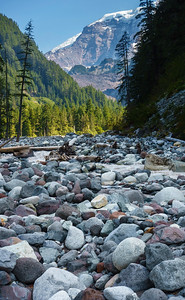 The Carbon River bed.