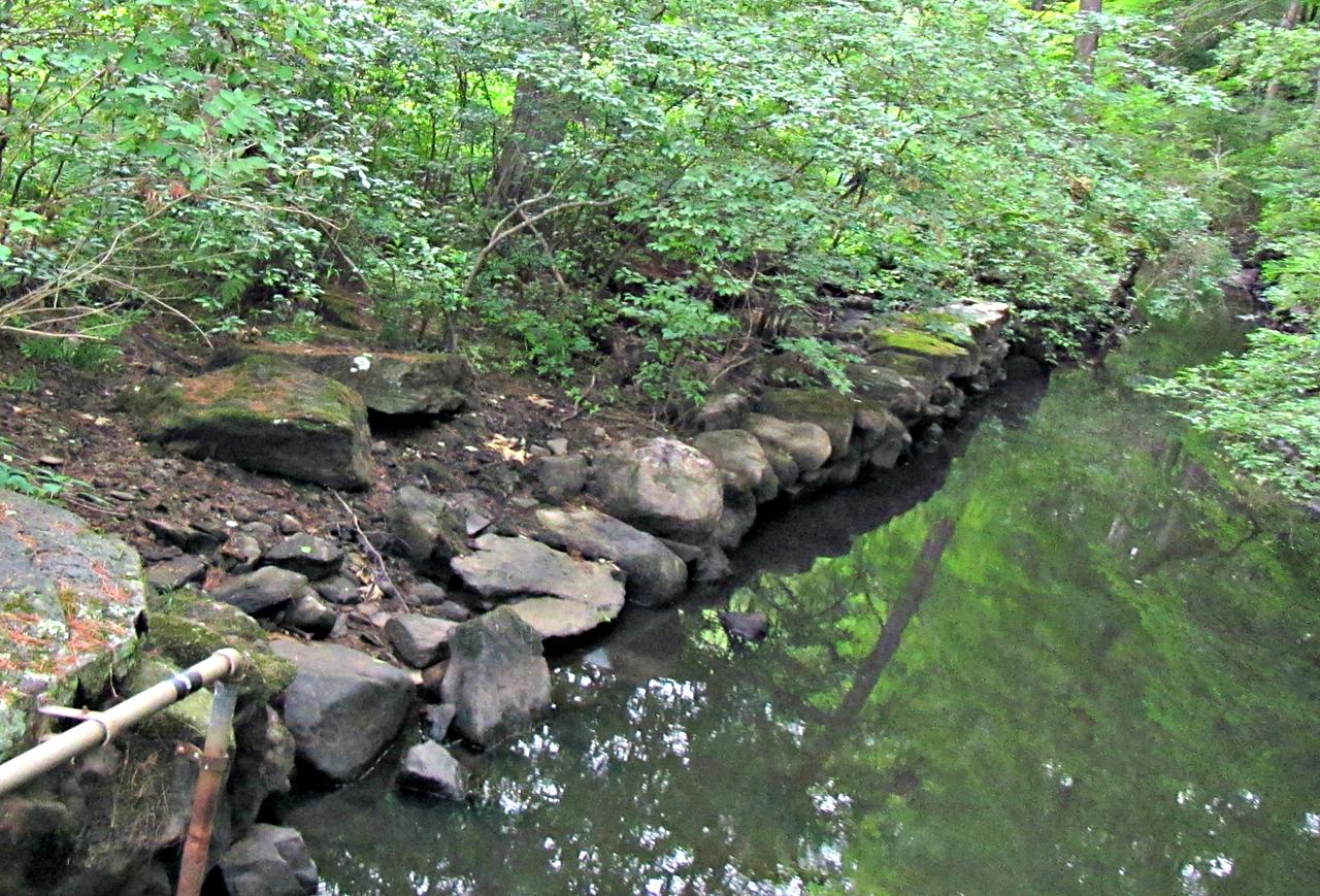 Nashoba Brook, at the Wheeler Farm/USGS gauge bridge.