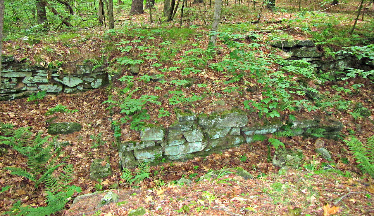 "Foundation of the Pest House - an 18th Century ""hospital."""