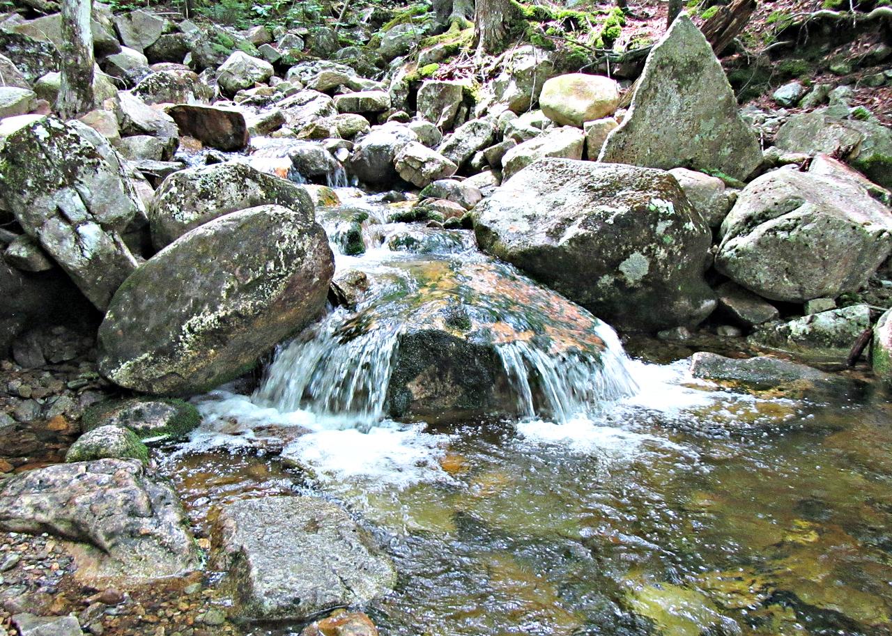 The Mt. Willard Trail follows a small brook, with cascades.