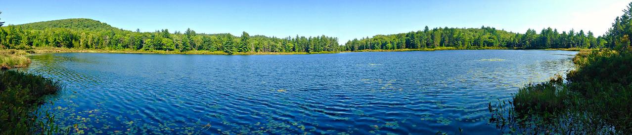 Trout Pond.