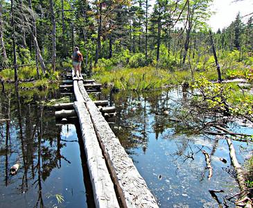 Long bog bridge, between Unknown and Kilback Ponds.