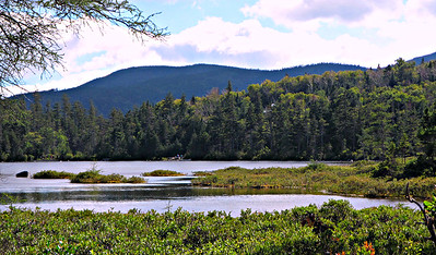 Mt. Wolf from east end of Lonesome Pond.