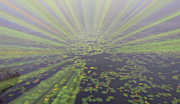 Kinsman Pond and the Cannonballs (September 2)
