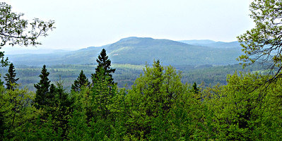 From Mt. P. Road Western Viewpoints: Dalton Mtn.