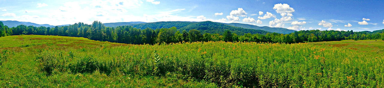 Mountain Meadow panorama: Greylock on left (S), Taconics in middle (W).