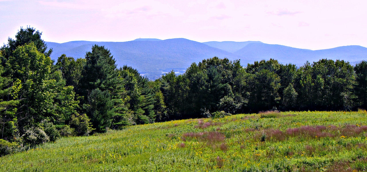 Mts. Greylock (with Tower) and Prospect, looking SSE from Mountain Meadow.