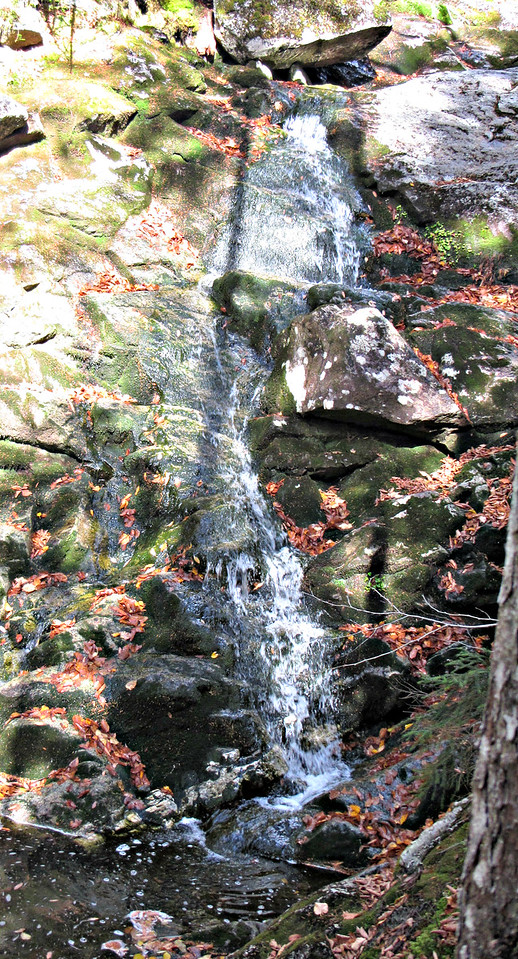 One of many cascades along Eliza Brook.