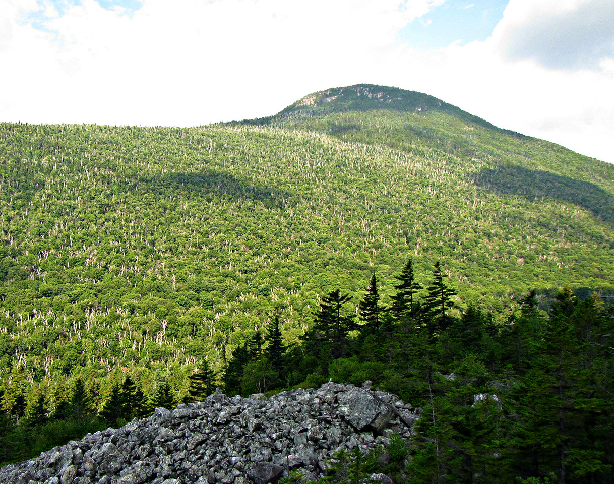 Zeacliff from Ethan Pond Trail.