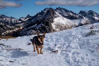 Rudy at Cutthroat Pass