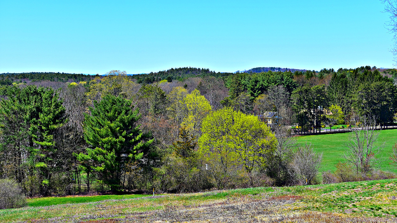 Looking north from Hathaway Hill in Drumlin Farm.