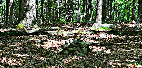 Punkatusset Hill summit cairn, about 50 yards off the Blue Trail.