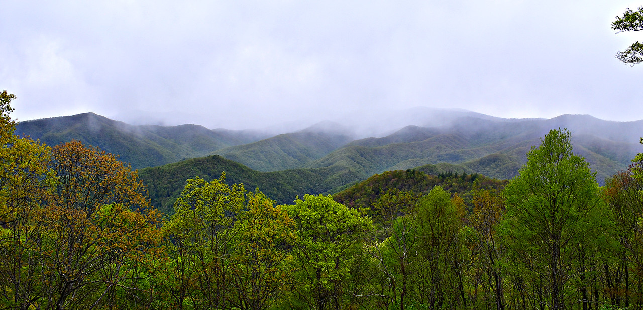 Blue Ridge Parkway - Old Witch Overlook.