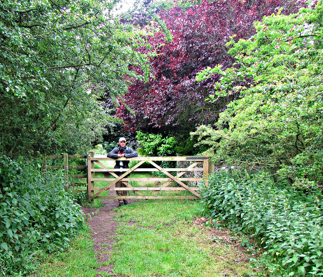 A gate, at Oldwall.