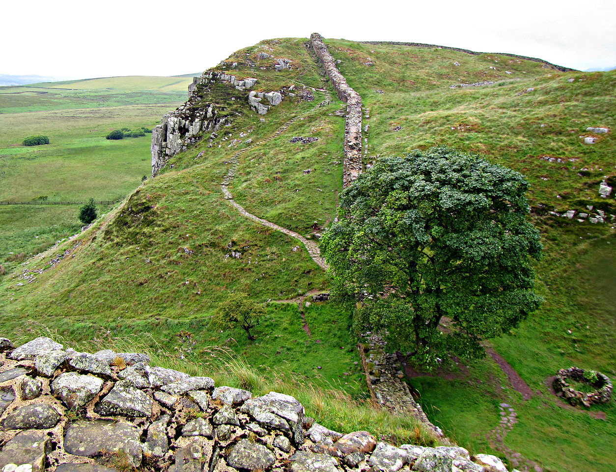 Sycamore Gap, from the west.