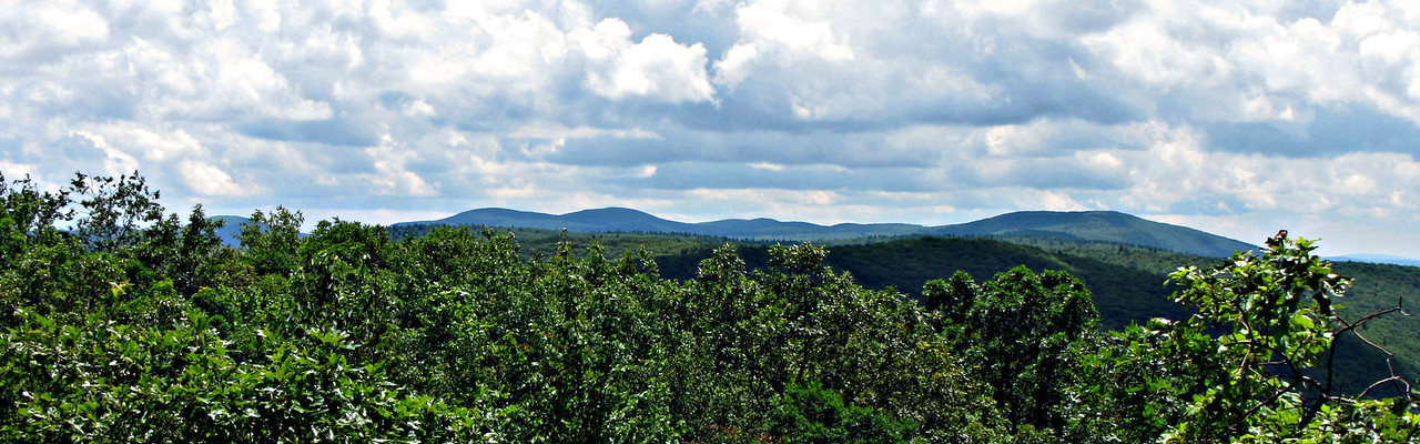 Looking back on the Taconic Range, from Mt. Fray.