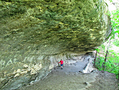 Rock Shelter - a limestone overhang above Onion Creek in McKinney Falls SP.