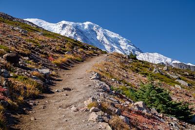 Burroughs Mtn at Mt. Rainier
