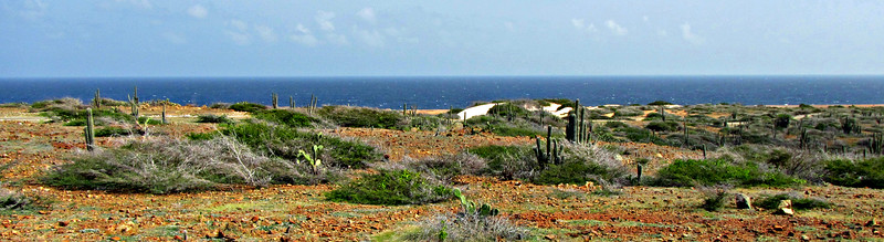 Viewpoint east above Boca Prins and its Dunes.