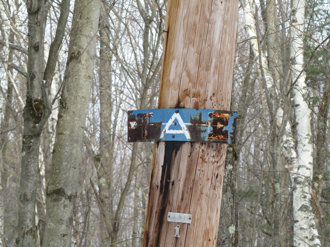 And the old trail marker telling us that TAC is to the right. This one fits right in with the Grafton Lake trail map nomenclature.