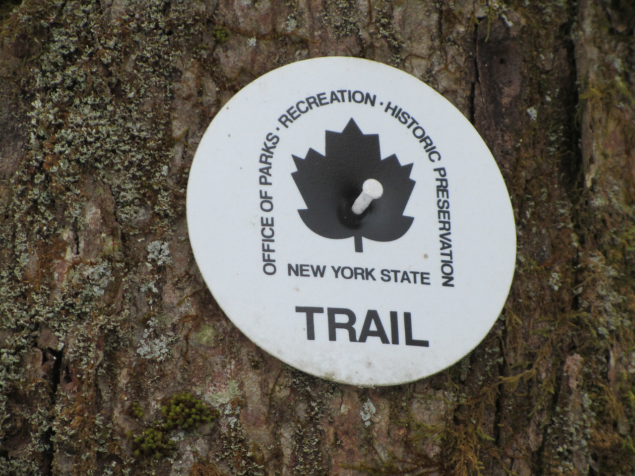 Check out these new trail markers. Very nice.