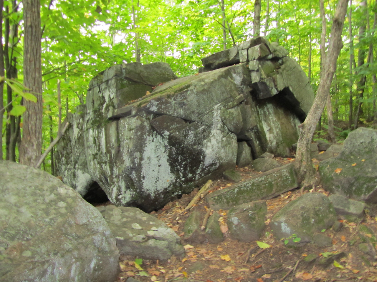 I thought this was an interesting boulder. Should be in some movie with a Hobbit.