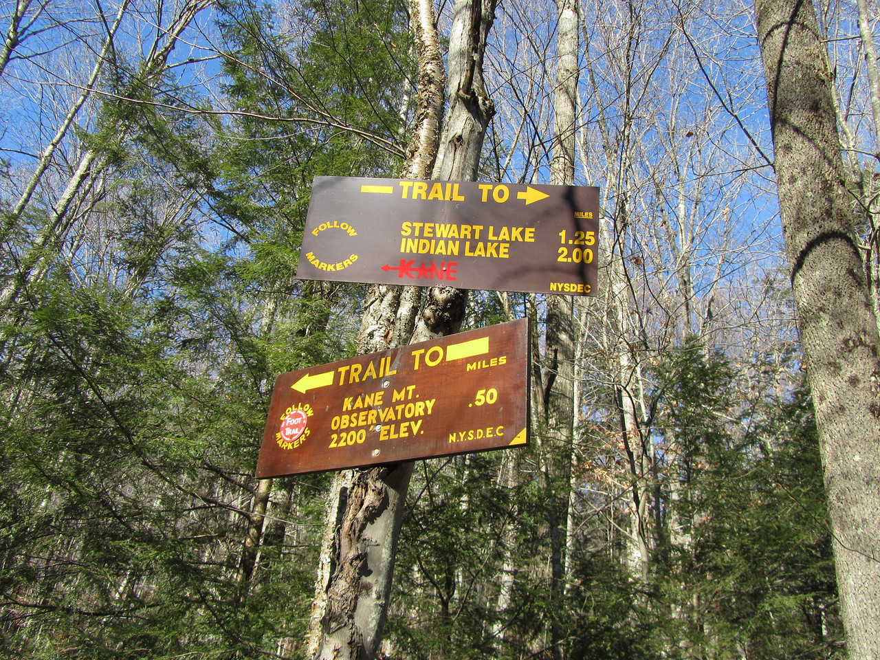 The trailhead. Fire tower was a quick jaunt. Might need to bring a dozen leaf worms and a travel rod and walk into Steward or Indian Lake. Will be a spring time expedition.