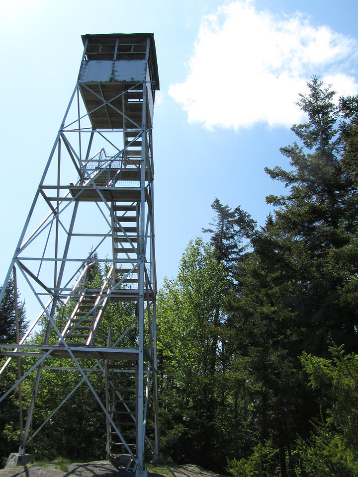 I didn't even see the fire tower but as my eyes rolled back in my head and I fell over, I must have snapped a picture when I hit the ground from bug induced blood loss. Gunter and I hiked 25 fire towers over the past year. I rated it as a 25 out of 25. He rated it a 26 and said that he would rather be neutered a second time before going up there again. Wow. Now that statement makes a point.