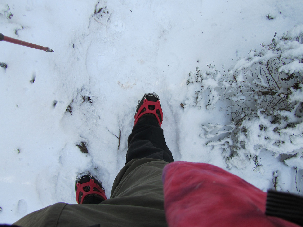 Haha Mother Nature. Gaiters, microspikes and hiking poles. Bring it on.