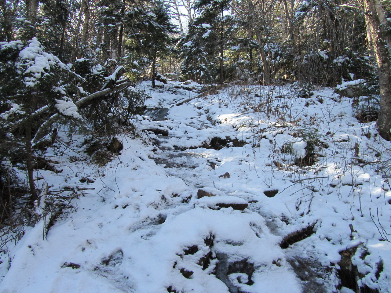 Per usual, the old trail is a new stream. Now icy and trecherous. Onward ho.